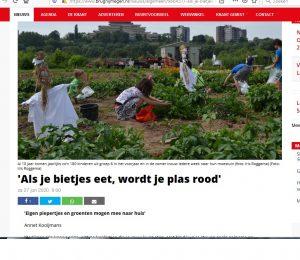 Knipsel Brug Nijmegen